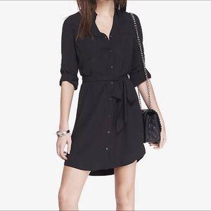 Express Portfolio Shirt Dress